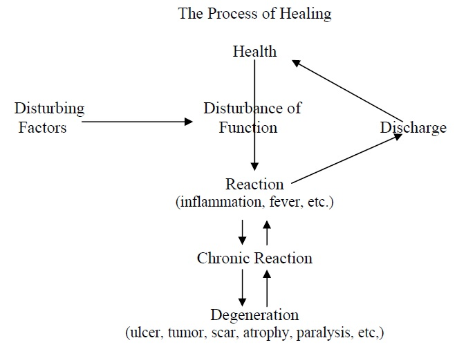 theprocessofhealing